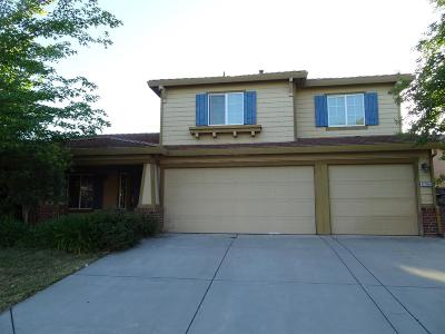 Elk Grove Single Family Home For Sale: 8704 Red Clover Way