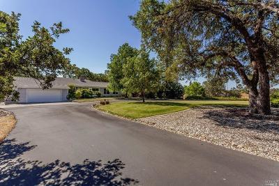 Yolo County Single Family Home For Sale: 28463 El Camino