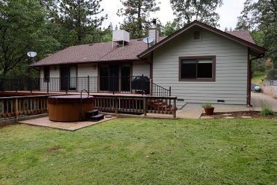 Camino Single Family Home For Sale: 2710 Escondito Circle