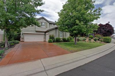 Rocklin Single Family Home For Sale: 4010 Aitken Dairy Road