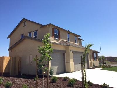 Manteca Single Family Home For Sale: 2047 Cimini Street