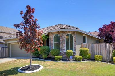 Elk Grove Single Family Home For Sale: 9433 Silver Bridle Way