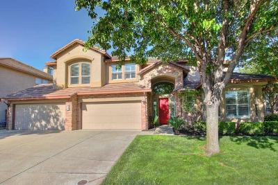 Elk Grove Single Family Home For Sale: 9847 Cortino Way