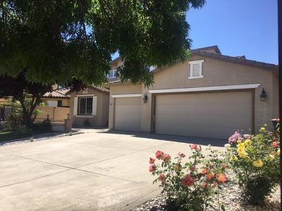 Elk Grove Single Family Home For Sale: 9582 Roan Fields Place
