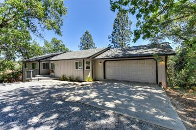 Placer County Single Family Home For Sale: 6139 Green Ridge
