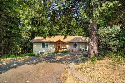 Pollock Pines Single Family Home For Sale: 3809 Garnet Road