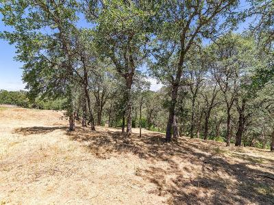 El Dorado Hills Residential Lots & Land For Sale: 4251 Hensley Circle