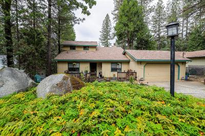 Grass Valley Single Family Home For Sale: 15194 Pammy Way