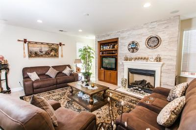 Mountain House Single Family Home For Sale: 381 West Alameda Drive
