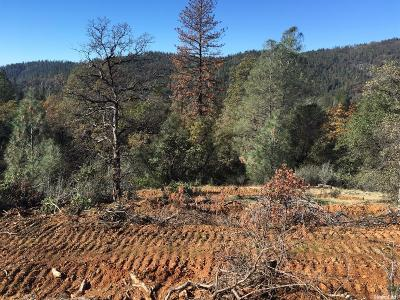 Yuba County Residential Lots & Land For Sale: 15171 Vavassuer Way