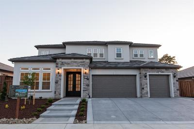 Folsom Single Family Home For Sale: 689 Oreno Circle