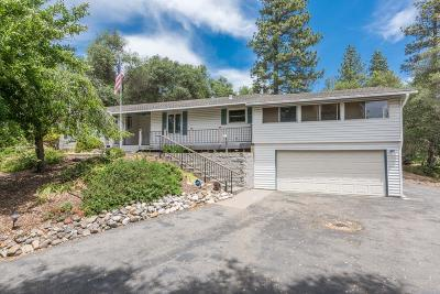 Placerville Single Family Home For Sale: 3801 Coon Hollow