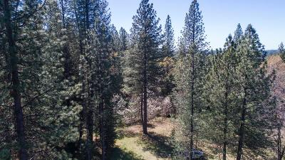 Grizzly Flats Residential Lots & Land For Sale: 9476 Grizzly Flat Road