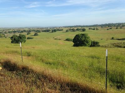 Amador County Residential Lots & Land For Sale: 174 Camanche Parkway North