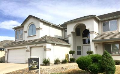 Elk Grove Single Family Home For Sale: 9547 Blue Thistle Way