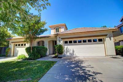West Sacramento Single Family Home For Sale: 220 Sands Court