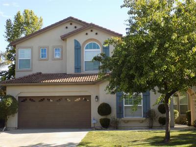 Stockton Single Family Home For Sale: 6141 Silveroak Circle