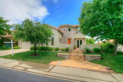 El Dorado Hills Single Family Home For Sale: 1720 Terracina Drive