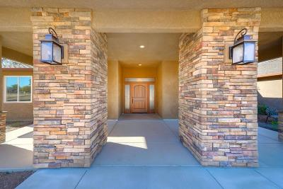 Valley Springs Single Family Home For Sale: 244 Melissa Way