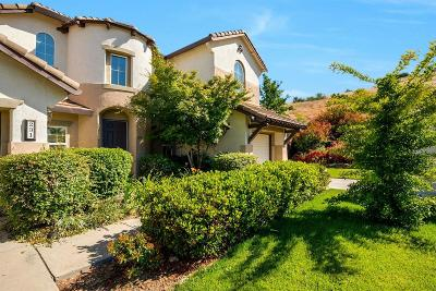 El Dorado Hills Single Family Home For Sale: 231 Gunston Court