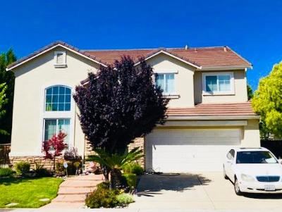 Stockton Single Family Home For Sale: 10598 Dnieper Lane