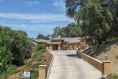 Auburn Single Family Home For Sale: 2595 Vineyard Drive