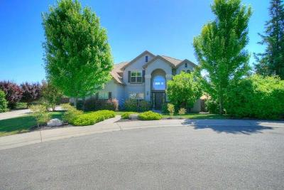 Rocklin Single Family Home For Sale: 4515 Saxony Drive