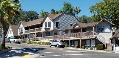Fair Oaks Commercial For Sale: 10112 Fair Oaks Boulevard #4