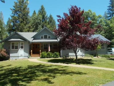Mokelumne Hill Single Family Home For Sale: 2280 Independence Road