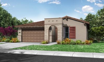 Roseville Single Family Home For Sale: 4161 Afterlight Lane