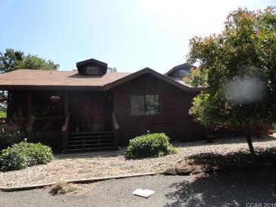 Valley Springs Single Family Home For Sale: 14219 Cobb Lane