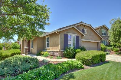 El Dorado Hills Single Family Home For Sale: 4658 Tramezzo Way