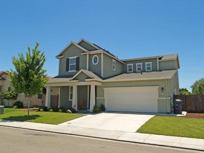 Manteca Single Family Home For Sale: 534 Monte Oro Street