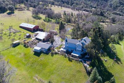 Placerville Single Family Home For Sale: 1241 Lotus Road