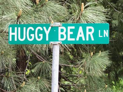 Grizzly Flats Residential Lots & Land For Sale: Huggy Bear Lane