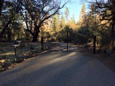Meadow Vista Residential Lots & Land For Sale: Bear Canyon Ct.