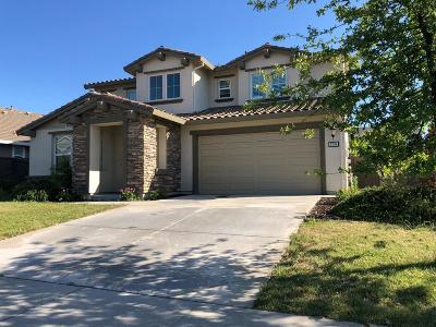 Rocklin Single Family Home For Sale: 2206 Telegraph Hill Drive