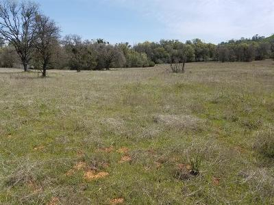 Rescue Residential Lots & Land For Sale: 3600 Deer Valley Road