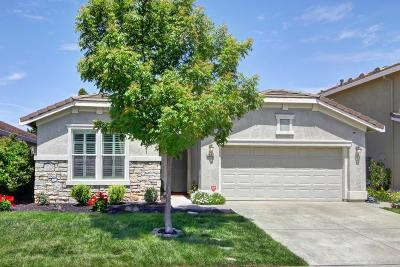 Elk Grove Single Family Home For Sale: 9857 Pipit Way