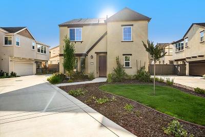 Roseville Single Family Home For Sale: 401 Dormarin Place