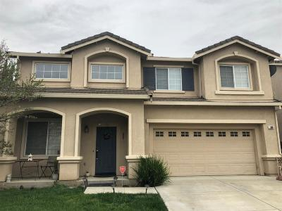 Tracy Single Family Home For Sale: 1180 King Loop