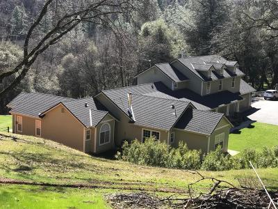 Grass Valley Single Family Home For Sale: 19381 Buck Ridge