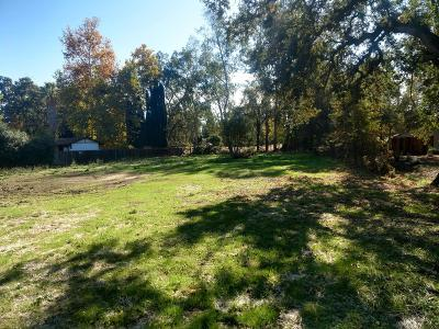 Orangevale Residential Lots & Land For Sale: 8672 Hodge Place