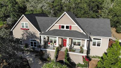 Placerville Single Family Home For Sale: 3064 Highgrade Street