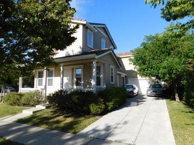 Mountain House Single Family Home For Sale: 316 Faulkner Street