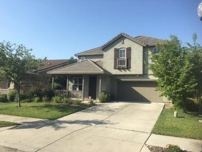 Sacramento Single Family Home For Sale: 331 Olivadi Way
