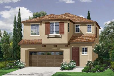 Roseville Single Family Home For Sale: 1040 Oakbriar Circle