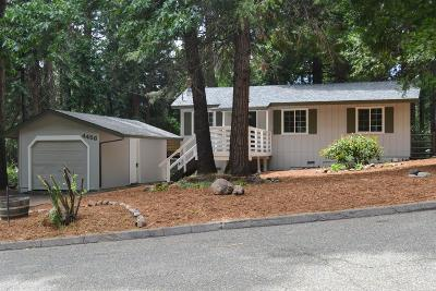 Pollock Pines Single Family Home For Sale: 4456 Park Woods Drive