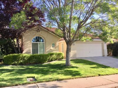 Rocklin Single Family Home For Sale: 2220 Misty Hollow Drive