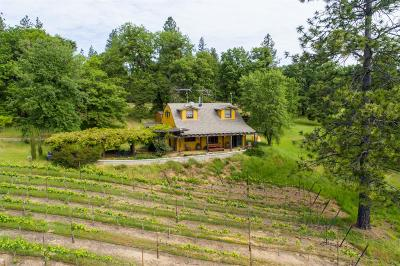 Single Family Home For Sale: 7750 Happy Valley Road